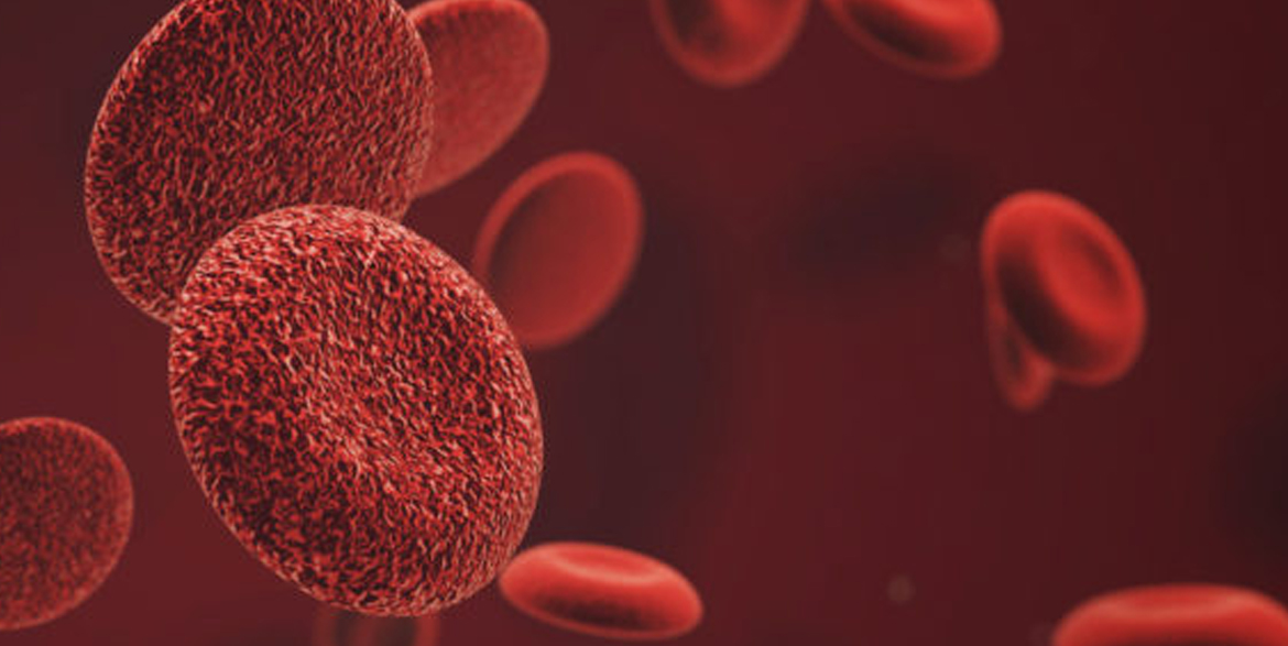 Professional render of blood cells in microenvironment